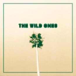 "WILD ONES, THE - Day Drunk / Come Around 7"""