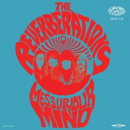 REVERBERATIONS, THE - Mess Up Your Mind LP