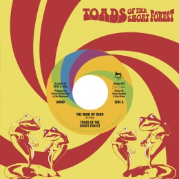 TOADS OF THE SHORT FOREST - The Wind Up Bird 7""