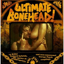 V/A - Ultimate Bonehead Vol.5 LP