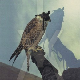 ICEAGE - You're Nothing LP + MP3 Download