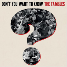 TAMBLES, THE - Don't you want to know LP