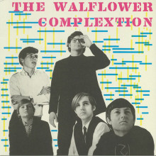 WALFLOWER COMPLEXTION - s/t LP
