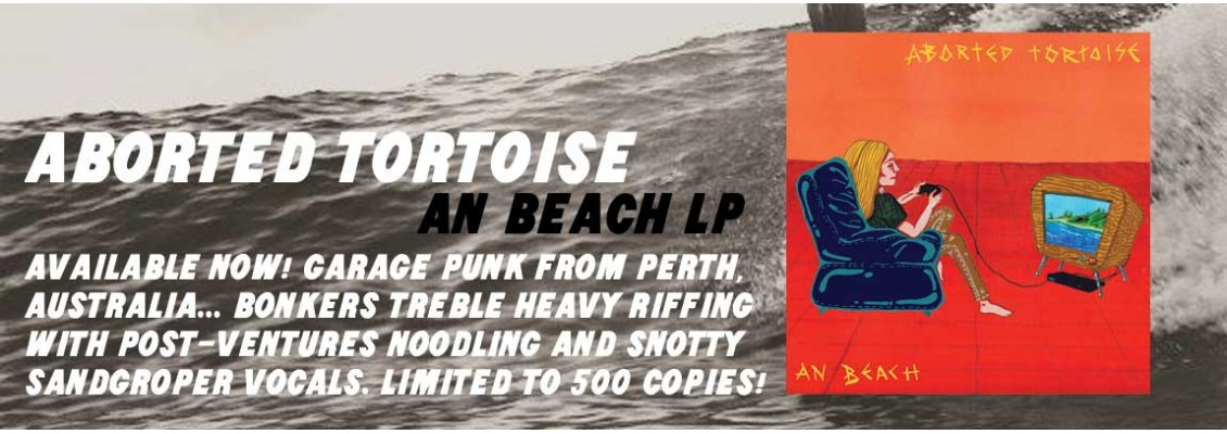 Aborted Toirtoise - An Beach LP